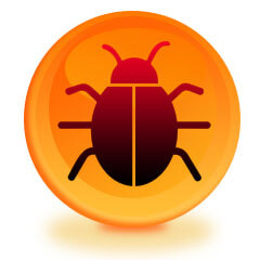 Bug Sweep In Your Home in Bath